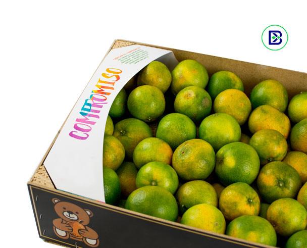Rinconeras de carton para caja fruta