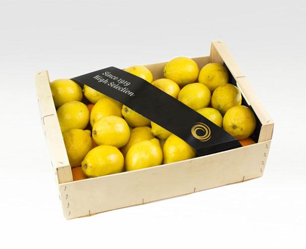 Bandas de carton para caja de fruta