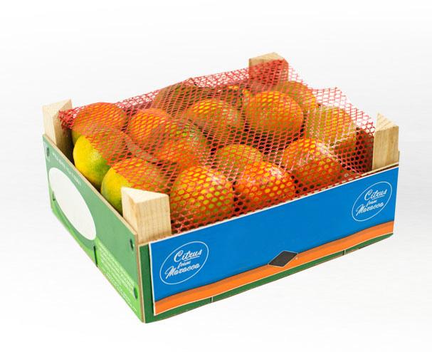 complexe carton filet pour fruits