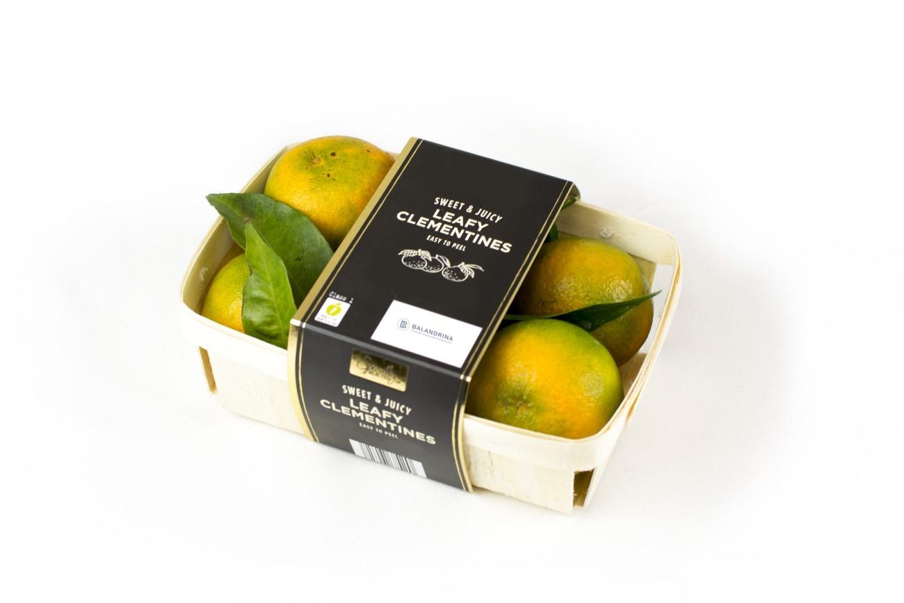 calidad embalaje frutas