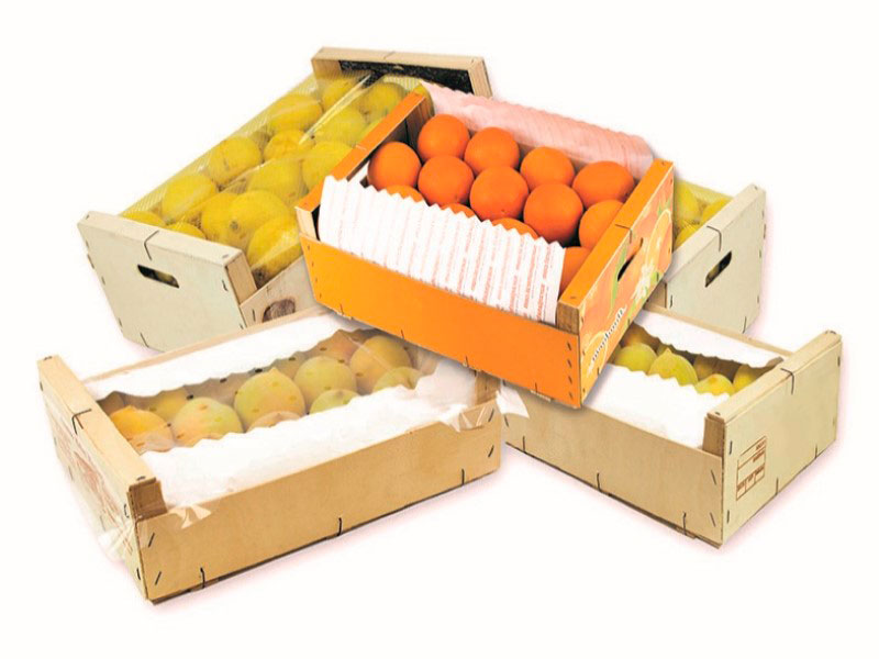 Forros y Camisas para cajas frutas Balandrina