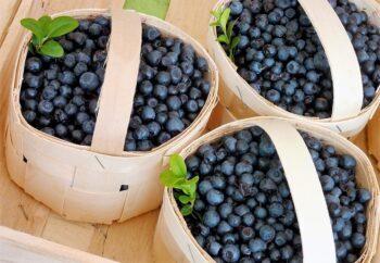 cesta madera para fruta